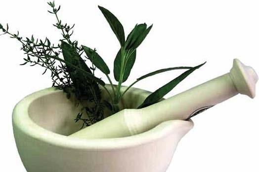 Őszi gyógynövények