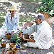 Az öreg kertészek szíve is jó