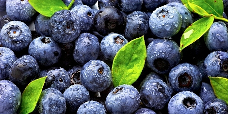 A flavonoidok egészségvédő hatása
