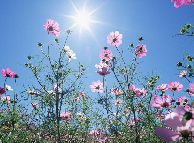 Hogyan hat a tavaszi napsugárzás a bőrre