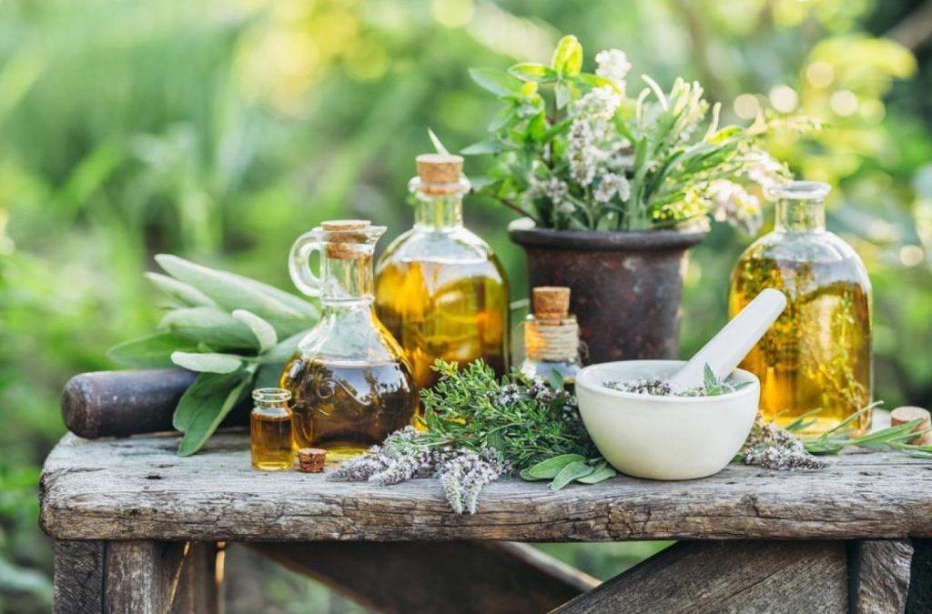 Gyógynövények, melyektől jobb az emésztés