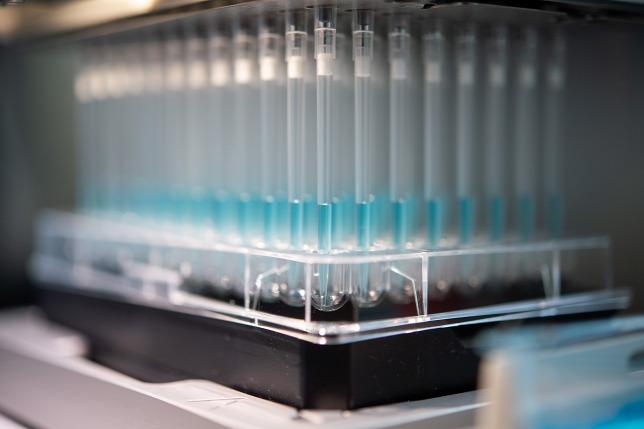 A hidroxi-klorokin-szulfát hatékonynak tűnik a koronavírus kezelésében